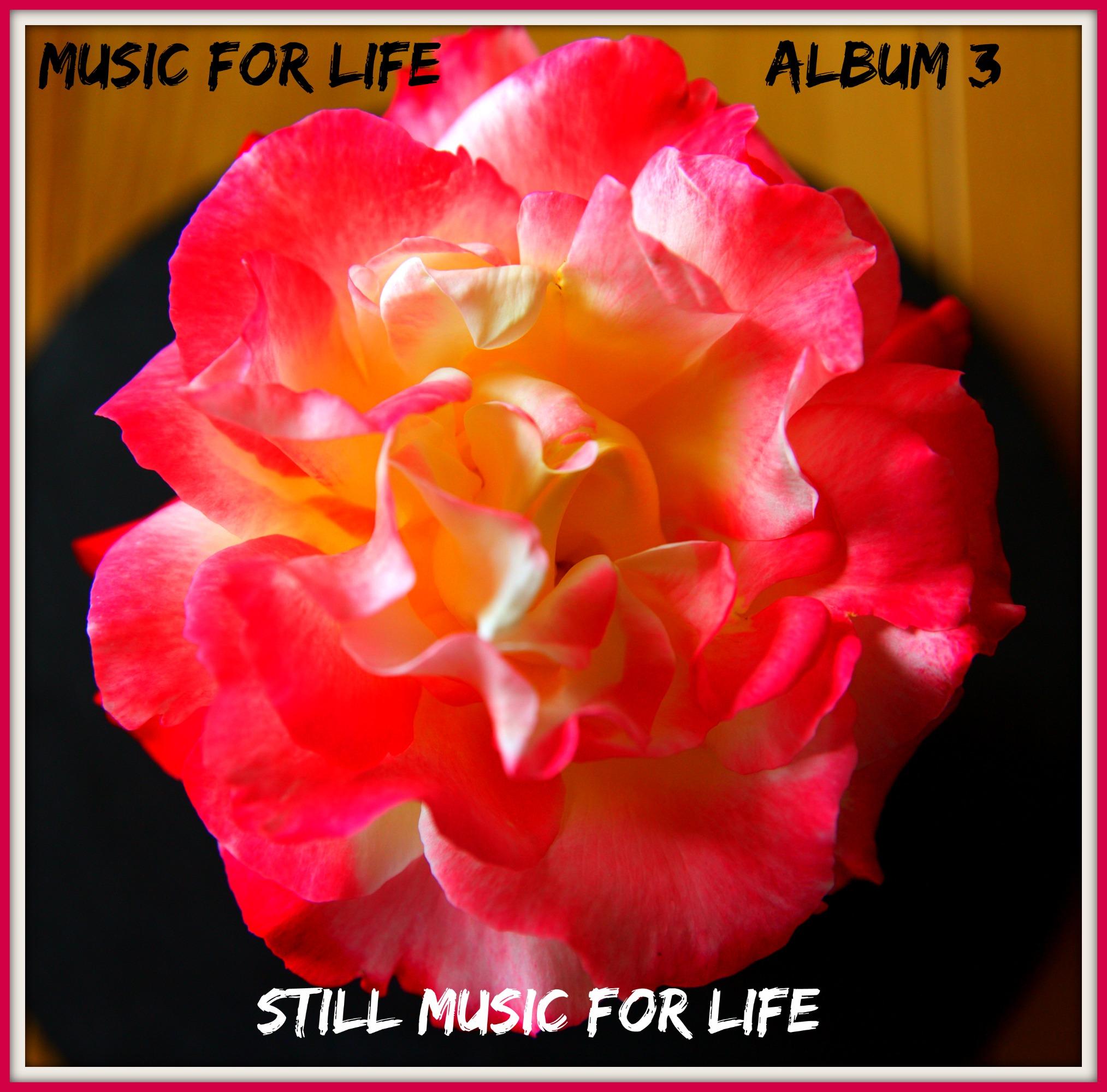"MP3 - ""Still Music for Life"" Album 3"
