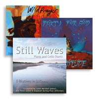 CD - 3 for 2 offer PARTY FOR GOD - WILD PRAYER - STILL WAVES