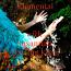 MP3 - Elemental Meditations in Movement - Guided Journeys - Full Album