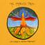 CD - The Phoenix Tree by Lua Maria & Adrian Freedman