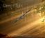 MP3 - 04 Rainbow Serpent (from Deep Flight by Aaron Andreas Gantenbein)
