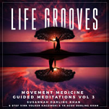 Life Grooves MP3 Album by Susannah Darling Khan and friends