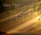 CD - Deep Flight by Aaron Andreas Gantenbein